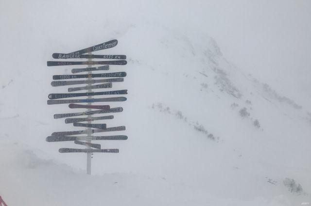 Вершина горы Фишт в Красной Поляне.