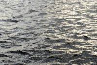 Новосибирское водохранилище размывает берега.