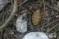 «Опасная находка»: в Винницкой области обнаружили рюкзак с гранатами