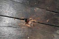 На Закарпатье во дворе частного дома предпринимателя прогремел взрыв