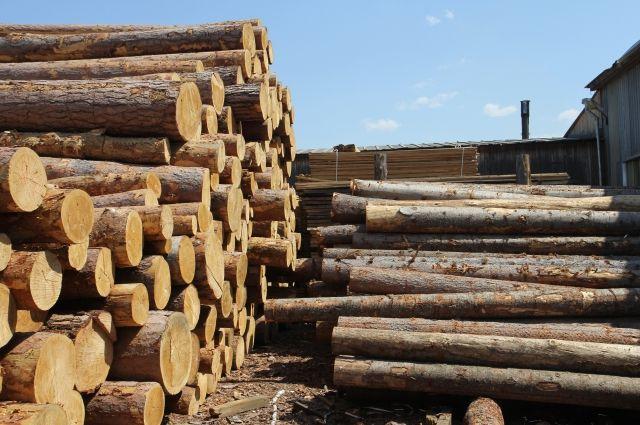 В 2018 году общая стоимость лесоматериалов, которые экспортирует Красноярский край, составила $721 млн