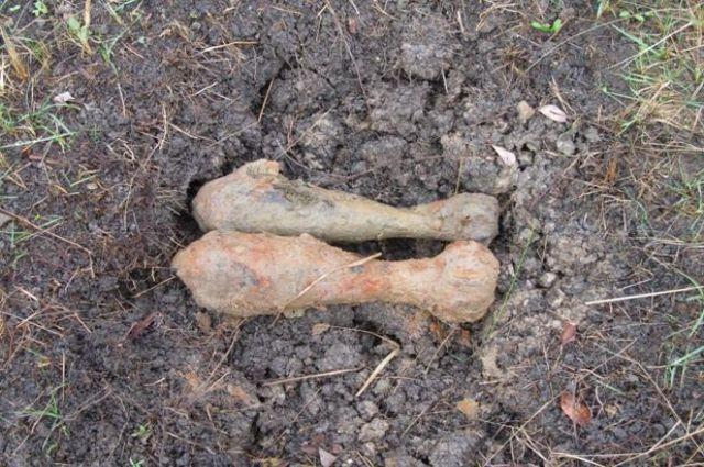 В Гурьевском районе обнаружены шесть снарядов времён войны