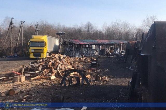 СБУ разоблачила незаконную продажу леса на 14 миллионов гривен