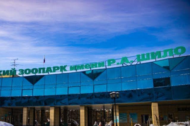 В Новосибирском зоопарке в семействе бурых капуцинов родились два малыша.