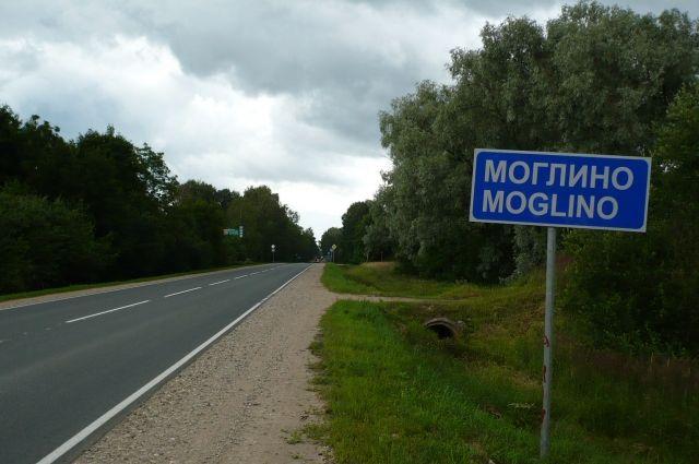 Рассекречены документы о зверствах эстонских карателей под Псковом