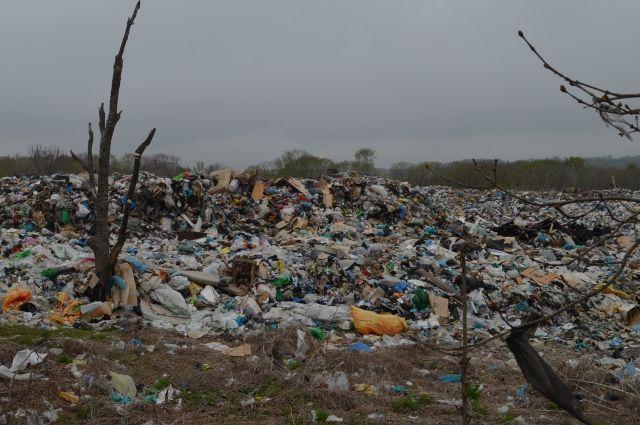 Надзорные органы нашли мусор в государственном природном биологическом заказнике «Уинский».