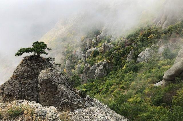 Урок тюменского учителя, посвященный Крыму, стал лучшим в стране