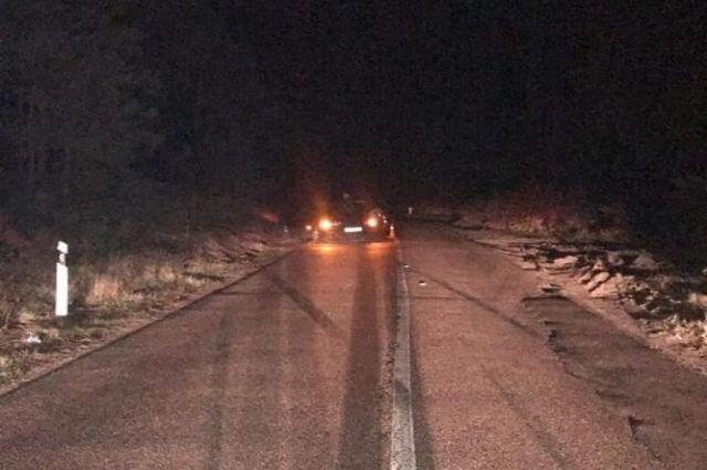 В Зеленоградском районе сбили двоих пешеходов, двигавшихся по обочине