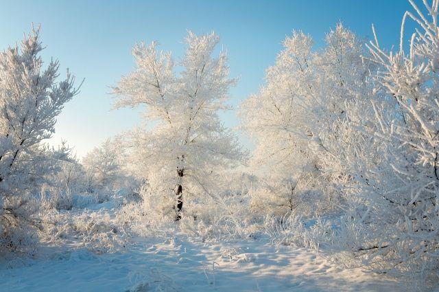 Вместе с морозами в регион придет северный ветер.