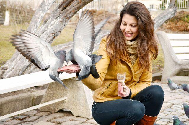 Стереотипы о поведении птиц не всегда верны.