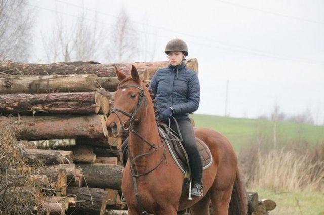 У каждой лошади необычное имя и множество медалей за победы на крупных соревнованиях.