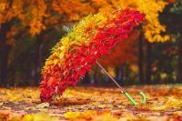 Октябрь-2019: в текущем году теплая осень за все 140 лет наблюдений
