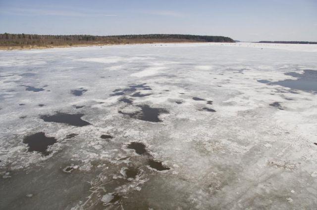 Лёд в некоторых местах полностью свободный от снега и прозрачный.