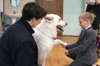 Собаки дарят детям радость.
