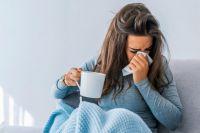 Врачи назвали топ-5 самых полезных продуктов при простуде
