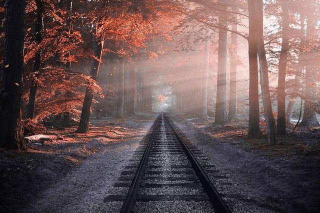 Сократится время в пути поезда «Янтарь»
