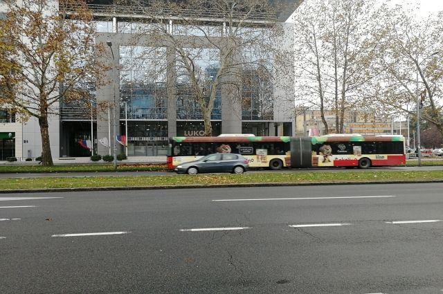 В Белграде много автобусов-