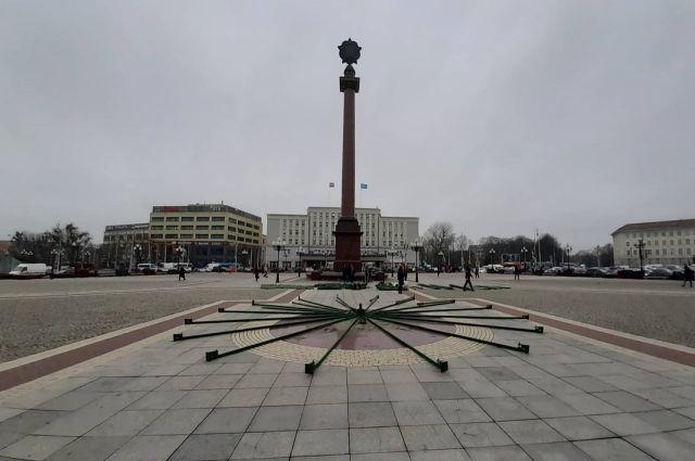 В Калининграде начали устанавливать главную новогоднюю ёлку