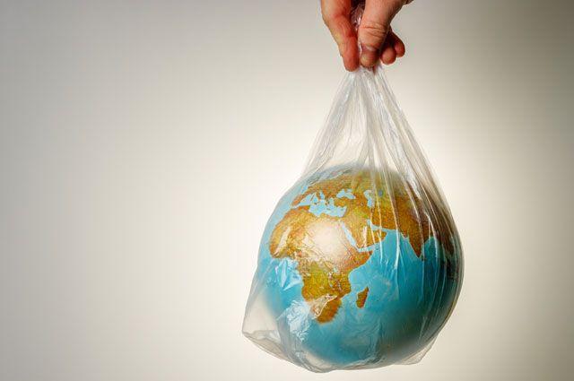 Пластиковый мир. Как экологично избавляться от одноразовой тары и пакетов