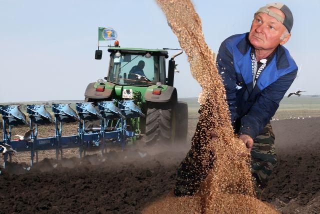 Последние три года мы получаем урожай зерна высокого качества.
