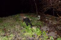 В Закарпатской области женщина топором убила своего мужа