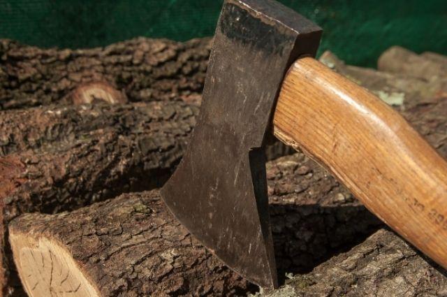 Житель области незаконно вырубил деревья на 100 тысяч рублей
