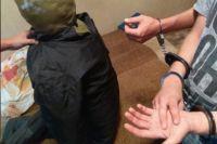 Оренбуржец осужден на причинение тяжкого вреда 3-летней племяннице.