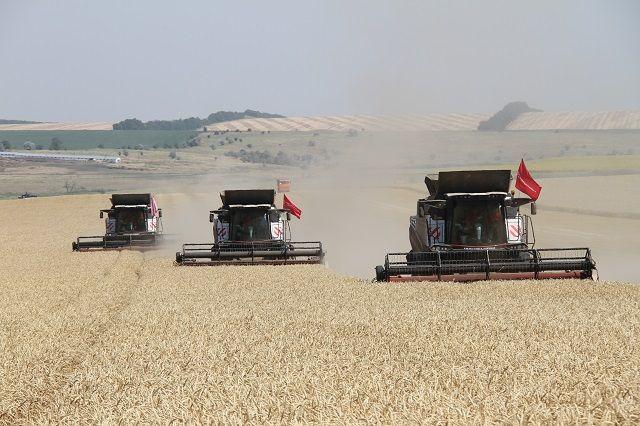 Новоалександровцы - в числе лидеров аграрного сектора в Ставропольском крае.