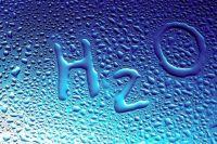 В здоровом теле - здоровый дух: почему так важно пить много воды