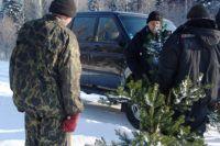 Ущерб лесу свыше 5 000 рублей влечет за собой уголовную ответственность.