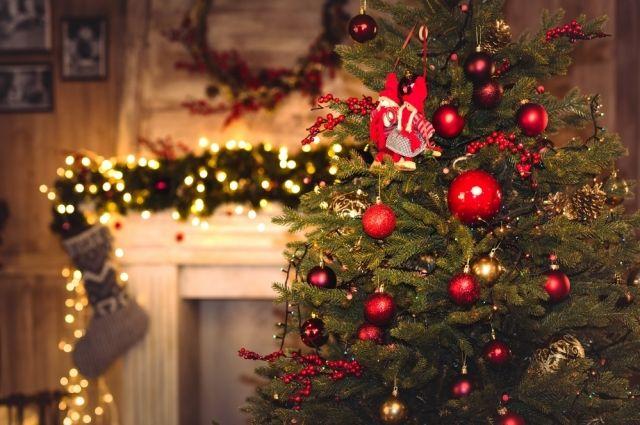 Куда ставить елку на Новый год