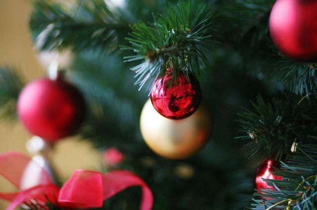 На Центральной площади Ижевска начали монтировать новогоднюю елку
