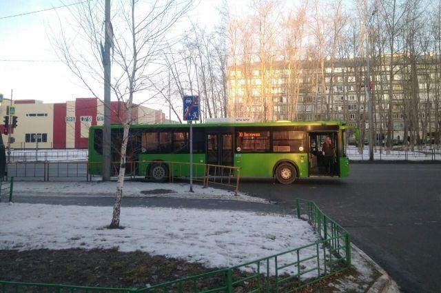 Тюменца сбил автобус из-за резко сменившегося сигнала светофора