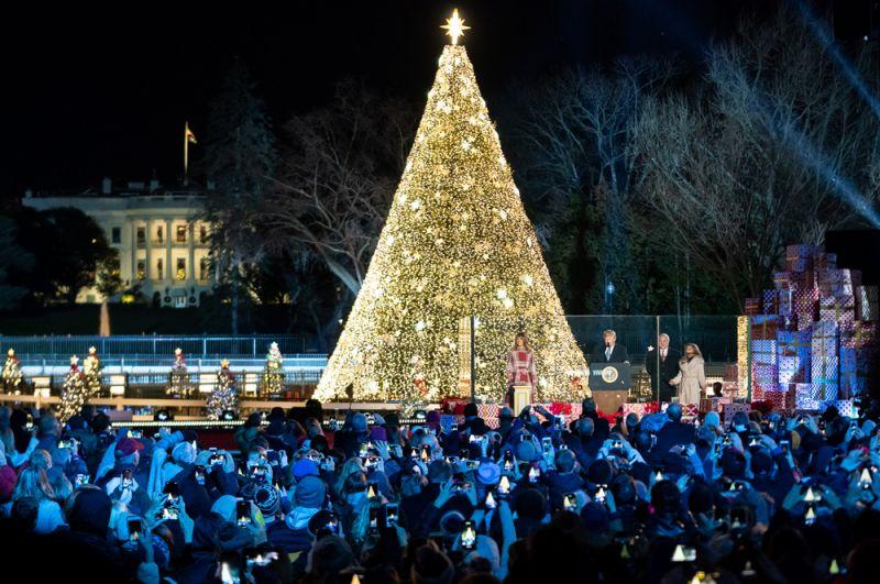 Елка перед Белым домом в Вашингтоне, США.