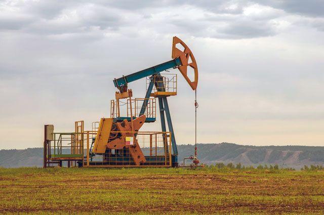 Нефтегазоносные Ханты-Мансийский и Ямало-Ненецкий округа дают 36% всех налогов, поступающих в федеральный бюджет.