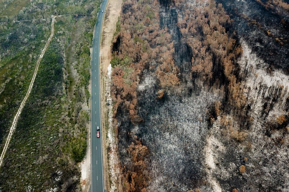 Последствия лесного пожара возле Порт-Маккуори, Новый Южный Уэльс. Аэрофотоснимок.
