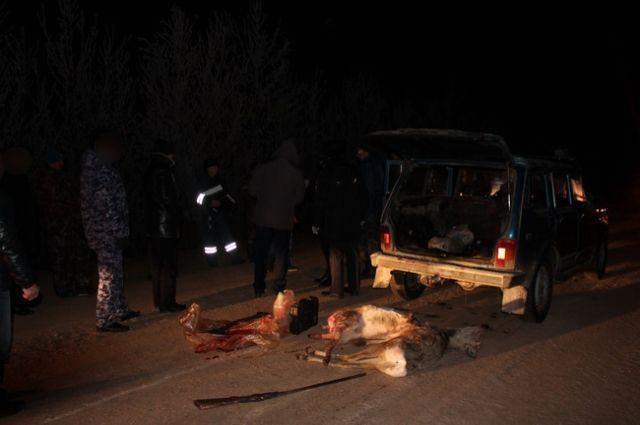 В Новоорском районе главный охотовед подозревается в браконьерстве.