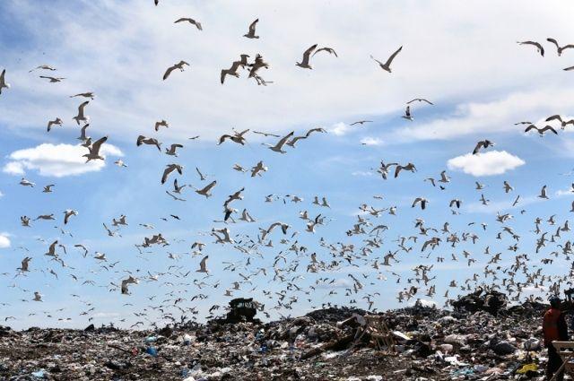 В Новотроицке участок под мусорный завод вывели из генплана.