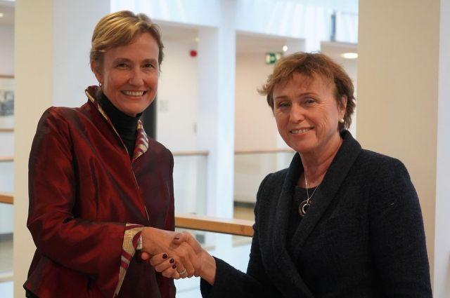 План действий Совета Европы для Украины - Германия выделит миллион евро