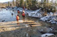 Специалисты обнаружили после прорыва дамбы превышение вредных веществ в реках Сисим и Сейба.