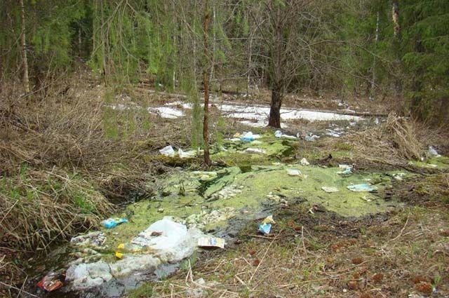 Жидкость, которая выделяется при гниении мусора на свалке, течёт по склонам вниз к лесным ручьям.
