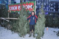 На елочных базарах Новосибирска предлагают купить лесную красавицу от 700 рублей.