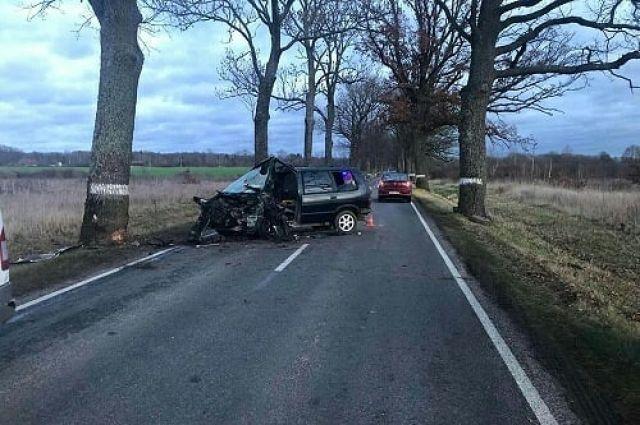 В Правдинском районе водитель получил травмы при столкновении с деревом