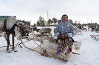 Владимир снимает быт и культуру северных народов