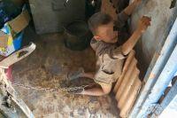 В Луганской области отец и мачеха посадили на цепь ребенка: приговор суда