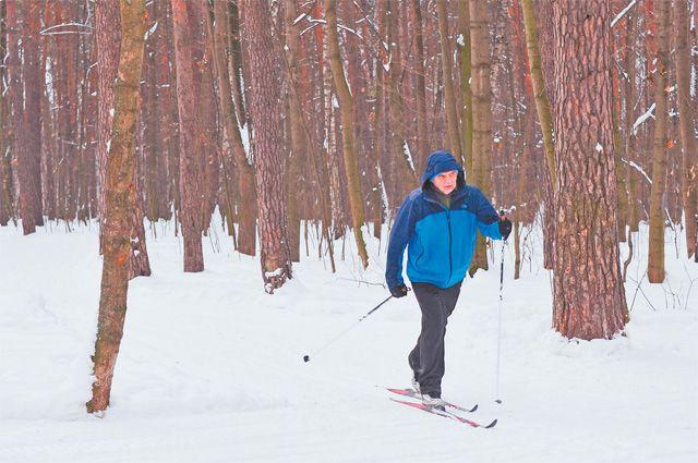 В Тропарёве проложат несколько лыжных трасс– впарке Олимпийской Деревни, Тропарёвском заказнике ипарке «Никулино».