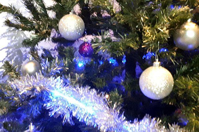 Тюменцев приглашают на открытие елки в сквере Казачьи луга