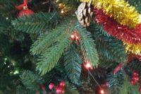 Оренбуржцев ждут в гости на открытие новогодних елок.
