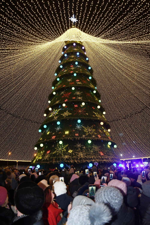 просто, фото новогодней елки в казани зря говорят