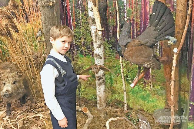 Участник кружка Миша знает названия всех птиц, представленных вэкспозиции.